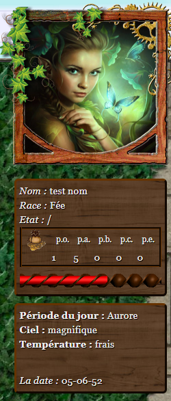 jouer:interface2.png